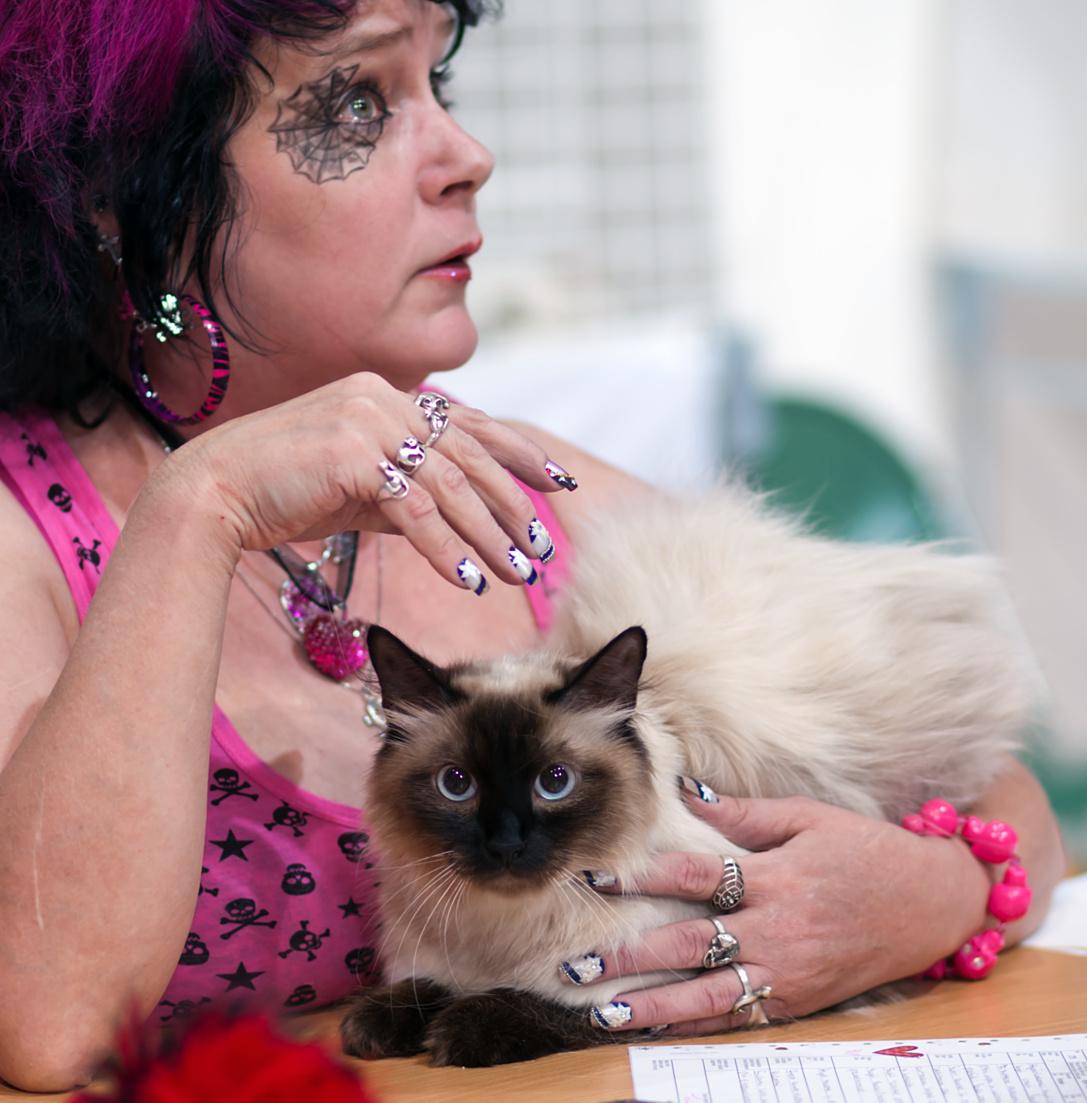 CH Una Rosa Ellbrante (Rosa) [NEM n 33], photo 156130, 2010-07-31