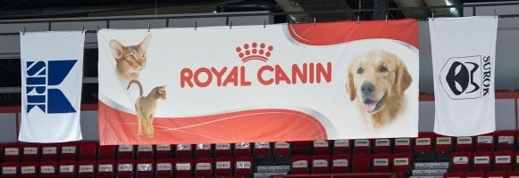 photo 156164 . SRK, Royal Canin, SUROK . 2010-07-31