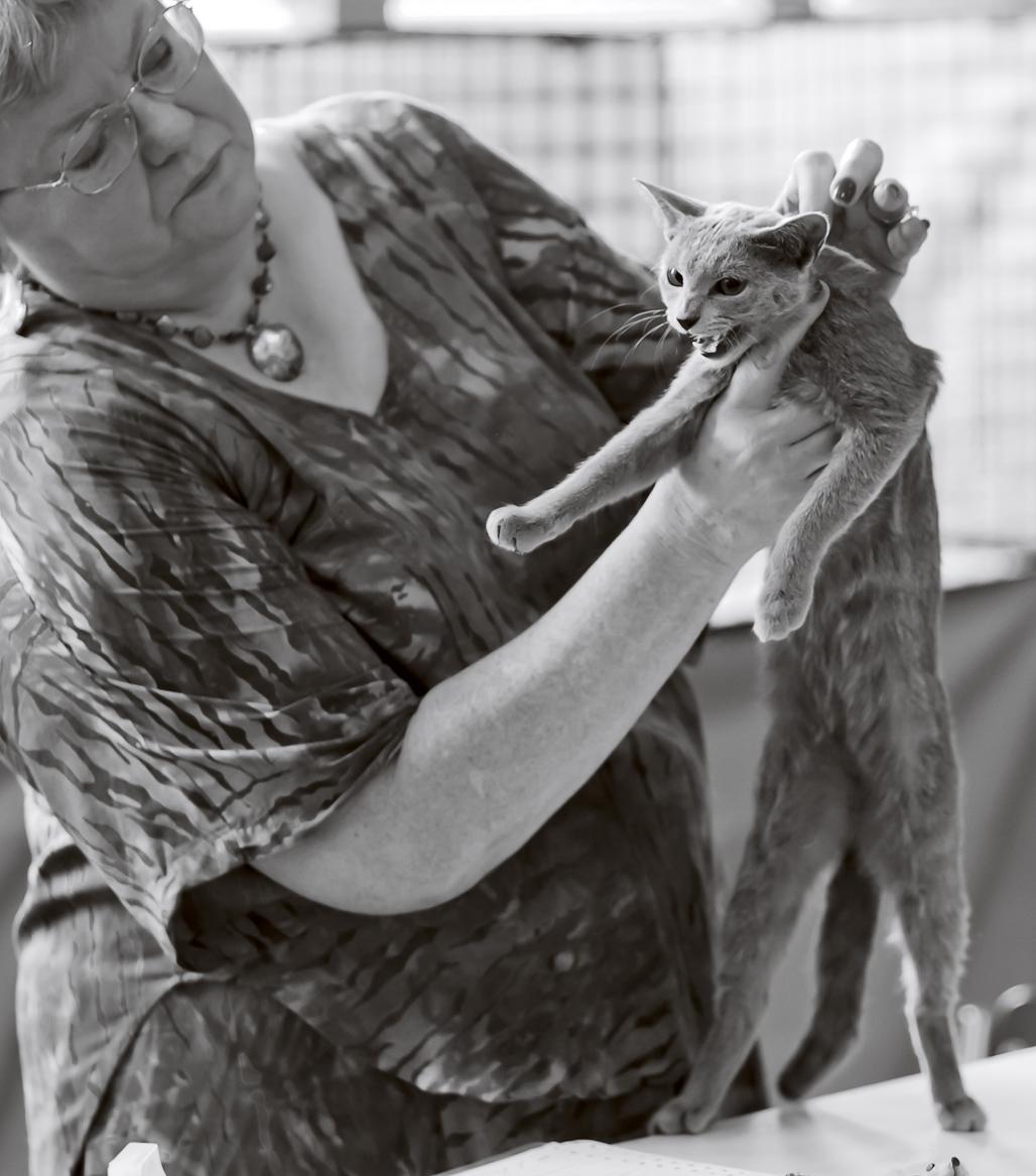 Ruskis Veroschka [RUS], kuva 157174, 29.8.2010
