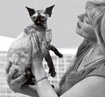 photo 158029 . Mega Miaow's Myrun [DRX f] . 2010-09-05
