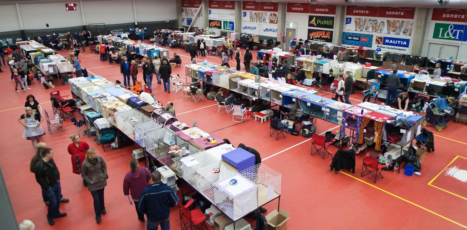 yleiskuvaa näyttelypaikalta, kuva 162153, 10.10.2010