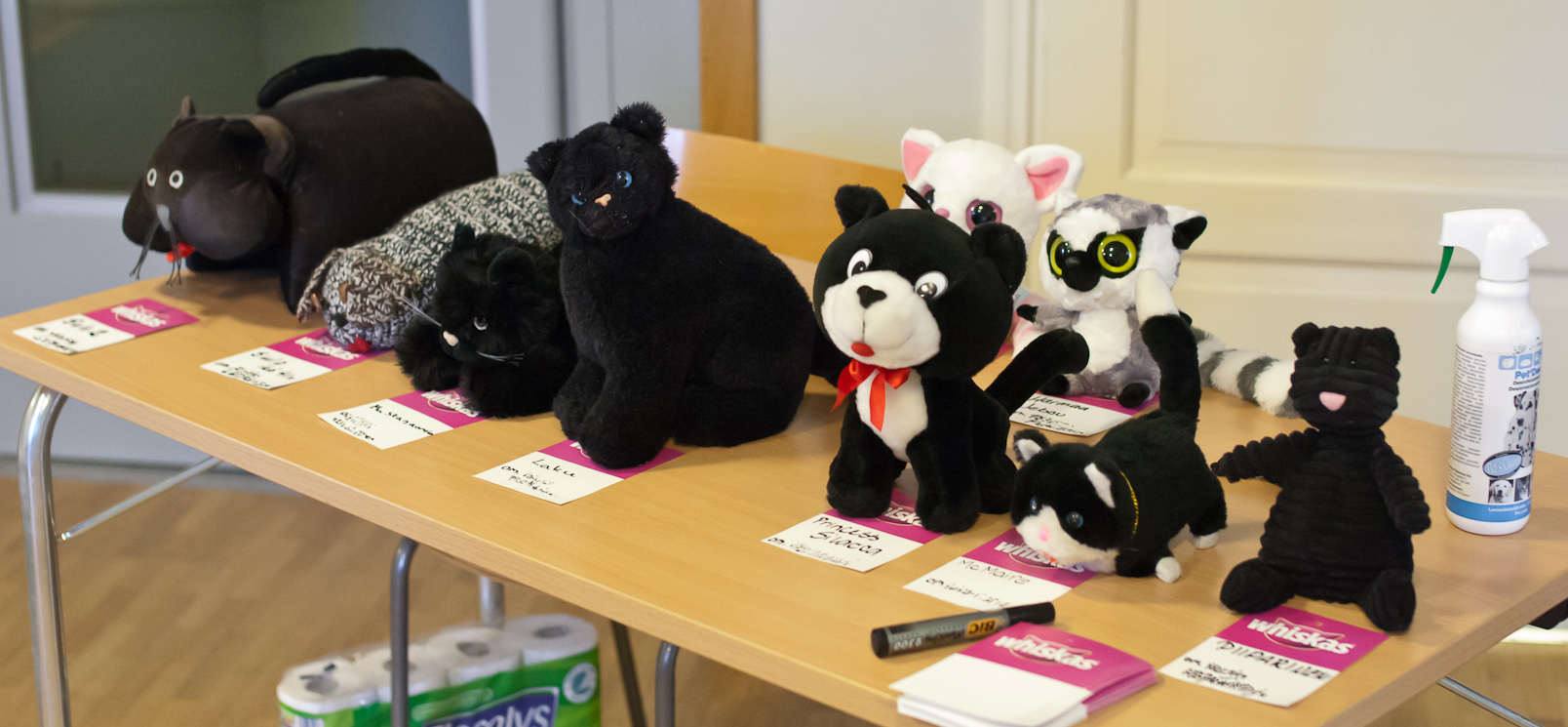 the toy cat contest, photo 165143, 2010-12-05