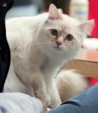 photo 168126 . 2011-01-29