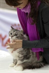 kuva 173164 . 14.5.2011