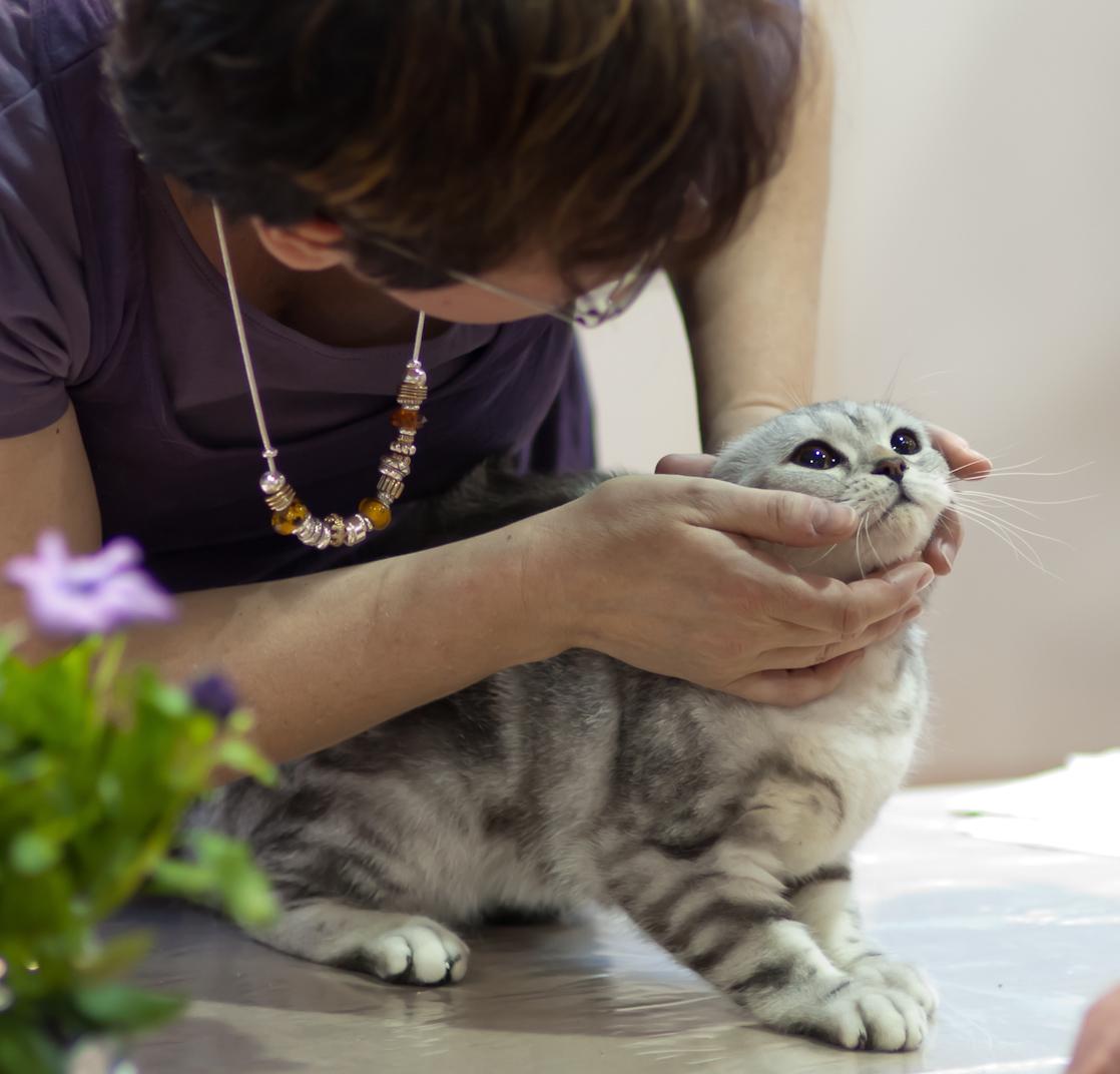 photo 174011, 2011-06-12