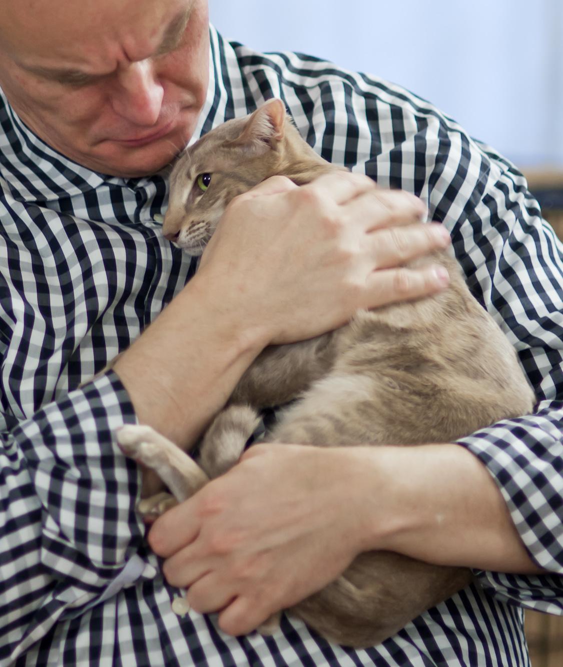 SGCA Orifame AinaAkvarelli (Akva) [OSH cs 24], kuva 183133, 12.11.2011