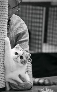 photo 190006 . [EXO] . 2012-03-10