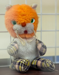 photo 191014 . the toy cat contest . 2012-03-17