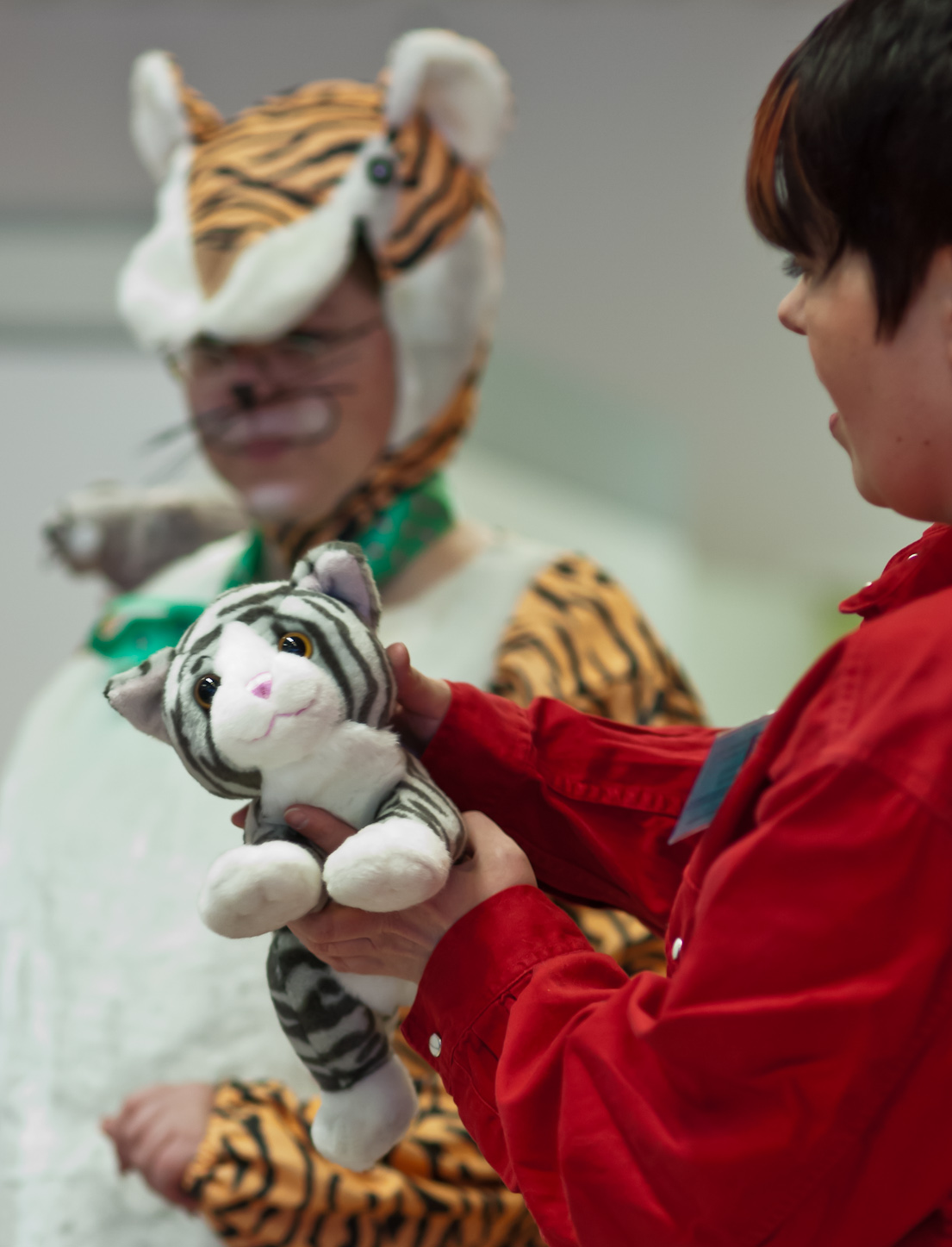 the toy cat contest, photo 191029, 2012-03-17