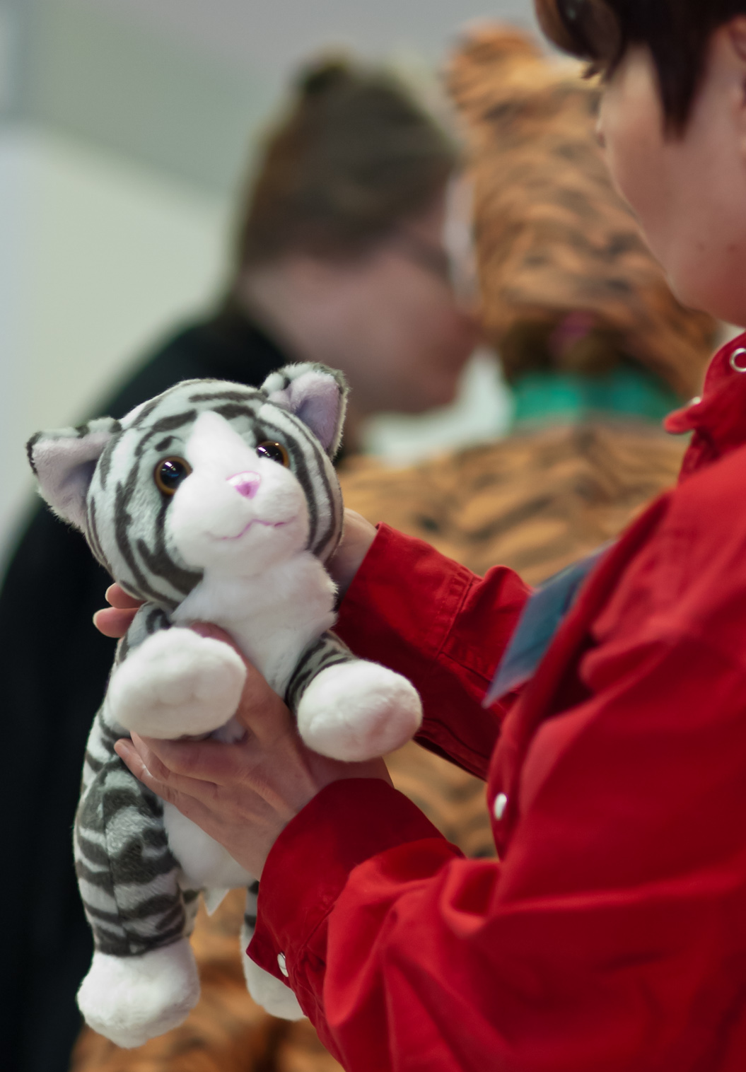 the toy cat contest, photo 191030, 2012-03-17