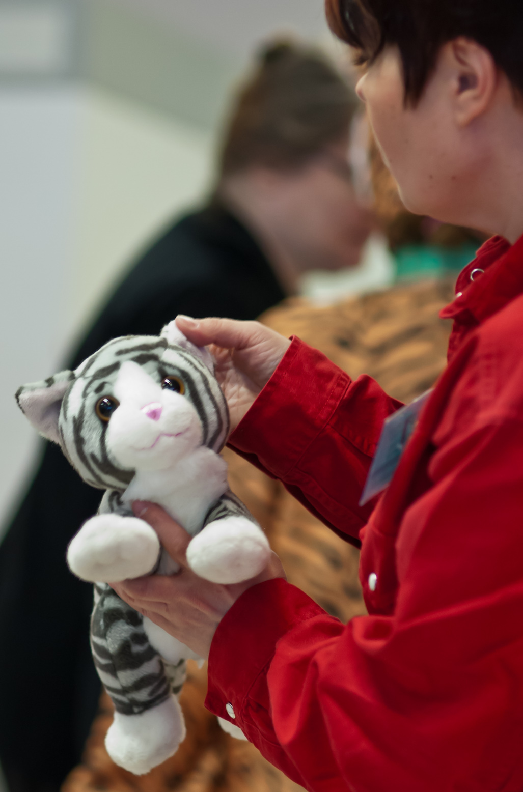 the toy cat contest, photo 191031, 2012-03-17