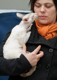 photo 191136 . Margo Agnus*LT [CRX g 03 33] born 2011-05-12 . 2012-03-17