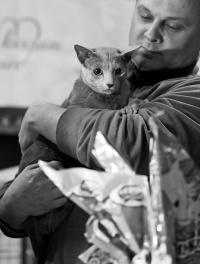 kuva 192067 . [RUS] . 24.3.2012