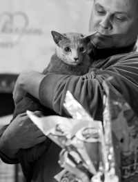 photo 192067 . [RUS] . 2012-03-24