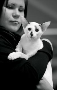 photo 193149 . Nalittna Bushido [SYS n 02] . 2012-04-14