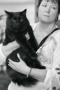photo 198042 . IC SE*Miss Mikkus' Il Divo [NFO n] . 2012-10-07