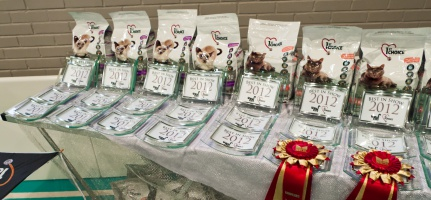 photo 198124 . the prize table . 2012-10-07
