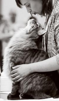 photo 199029 . GIC Luna-Purr Lord Love Machine (Liikeri) [MCO n 23] . 2012-11-03