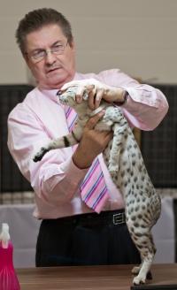 photo 200035 . CH PikesPeak Sarafina of Wild'n Sweet [OCI ns 24] . 2012-11-11
