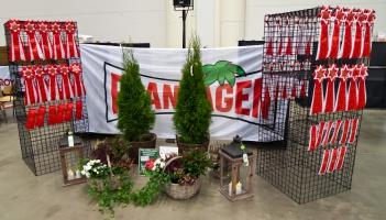 photo 200150 . Plantagen and rosettes . 2012-11-11