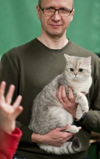 kuva 202007 . EmeraldCharm Finn Fonzie [BRI ay 11] syntynyt 11.5.2012 . 29.12.2012