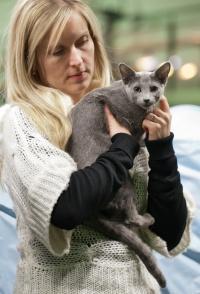 photo 202054 . Shady-Lady's Fairlane [RUS] . 2012-12-29