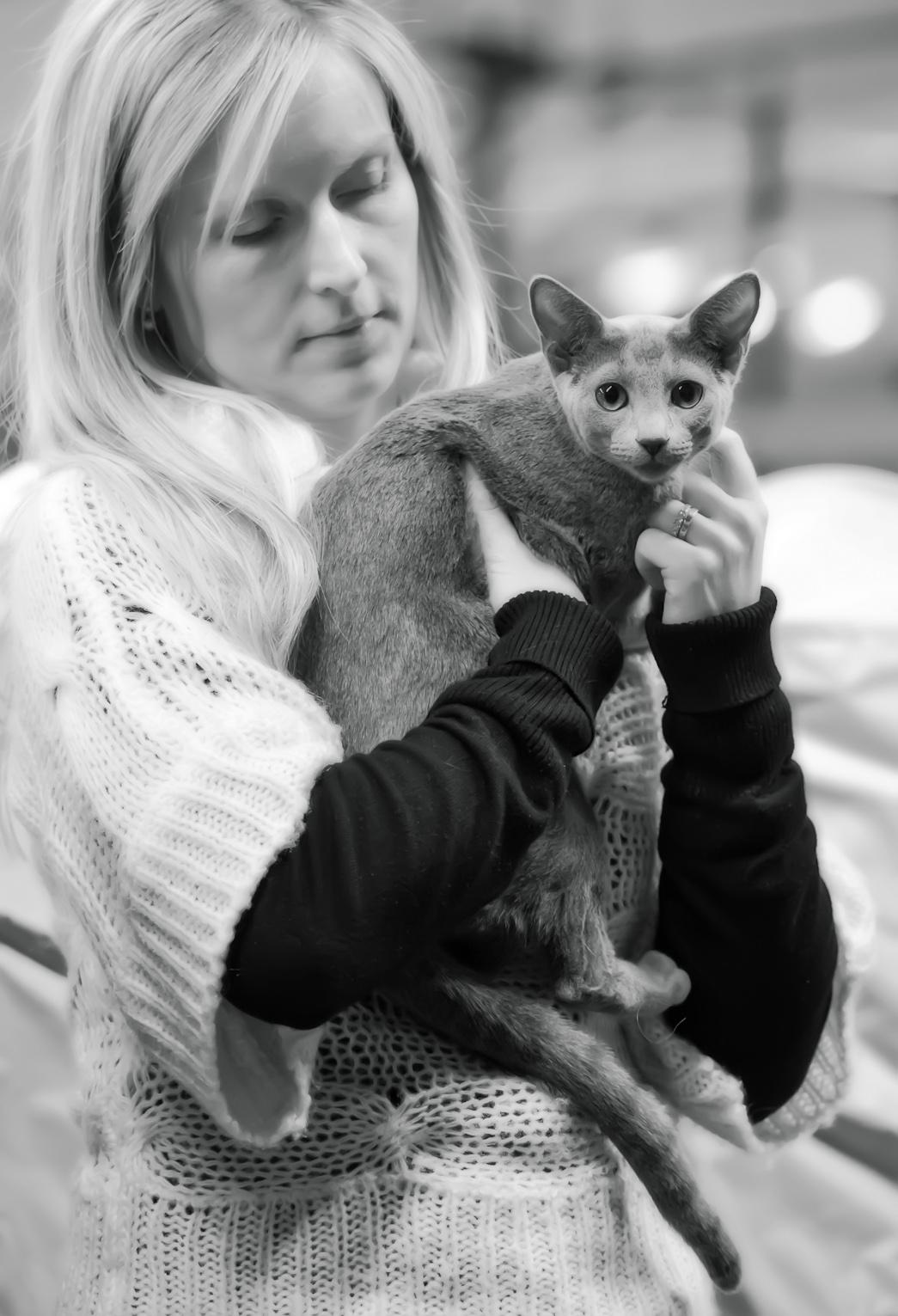 Shady-Lady's Fairlane [RUS], photo 202055, 2012-12-29