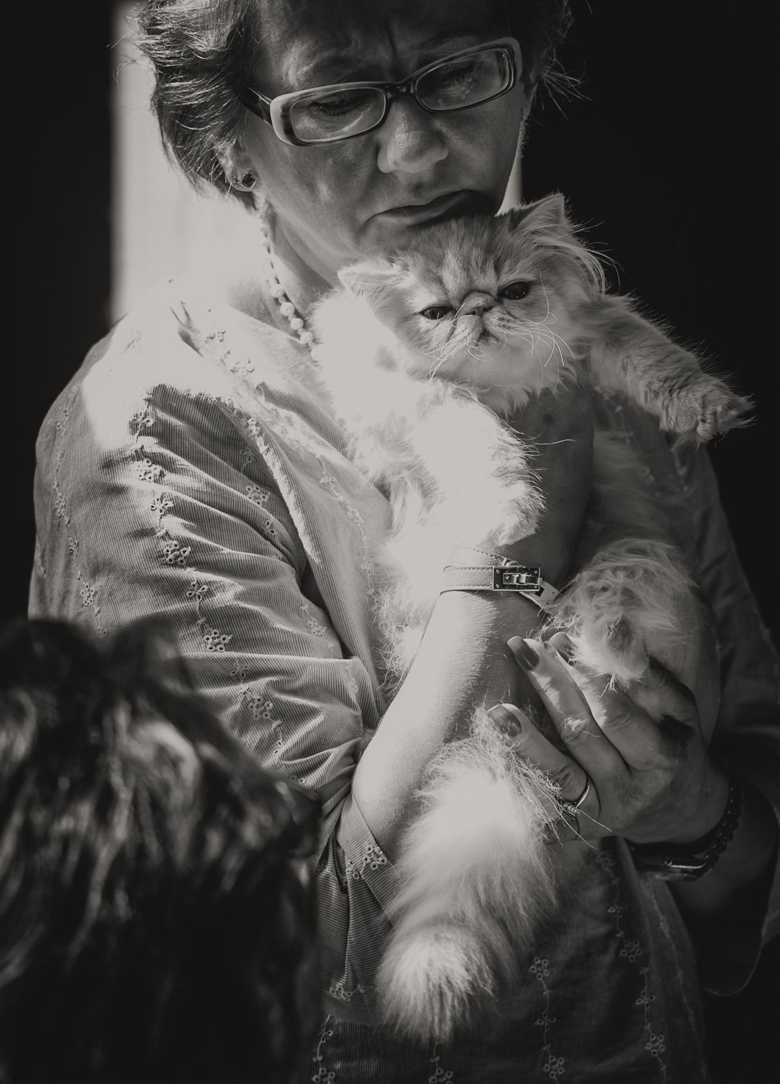 Nostri Vincent Vanilla Dream (Martta) [PER e 24], kuva 210096, 27.7.2013