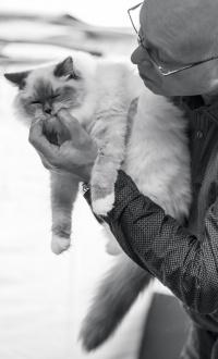 photo 218027 . Hakalan Grace Kelly [RAG a 04] . 2014-03-22