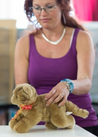photo 223094 . the toy cat contest . 2014-07-12