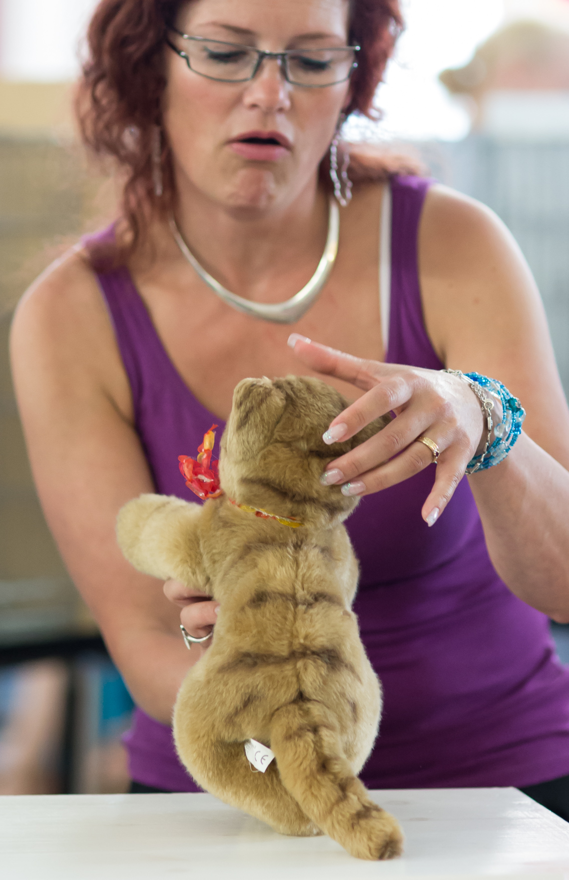 the toy cat contest, photo 223095, 2014-07-12