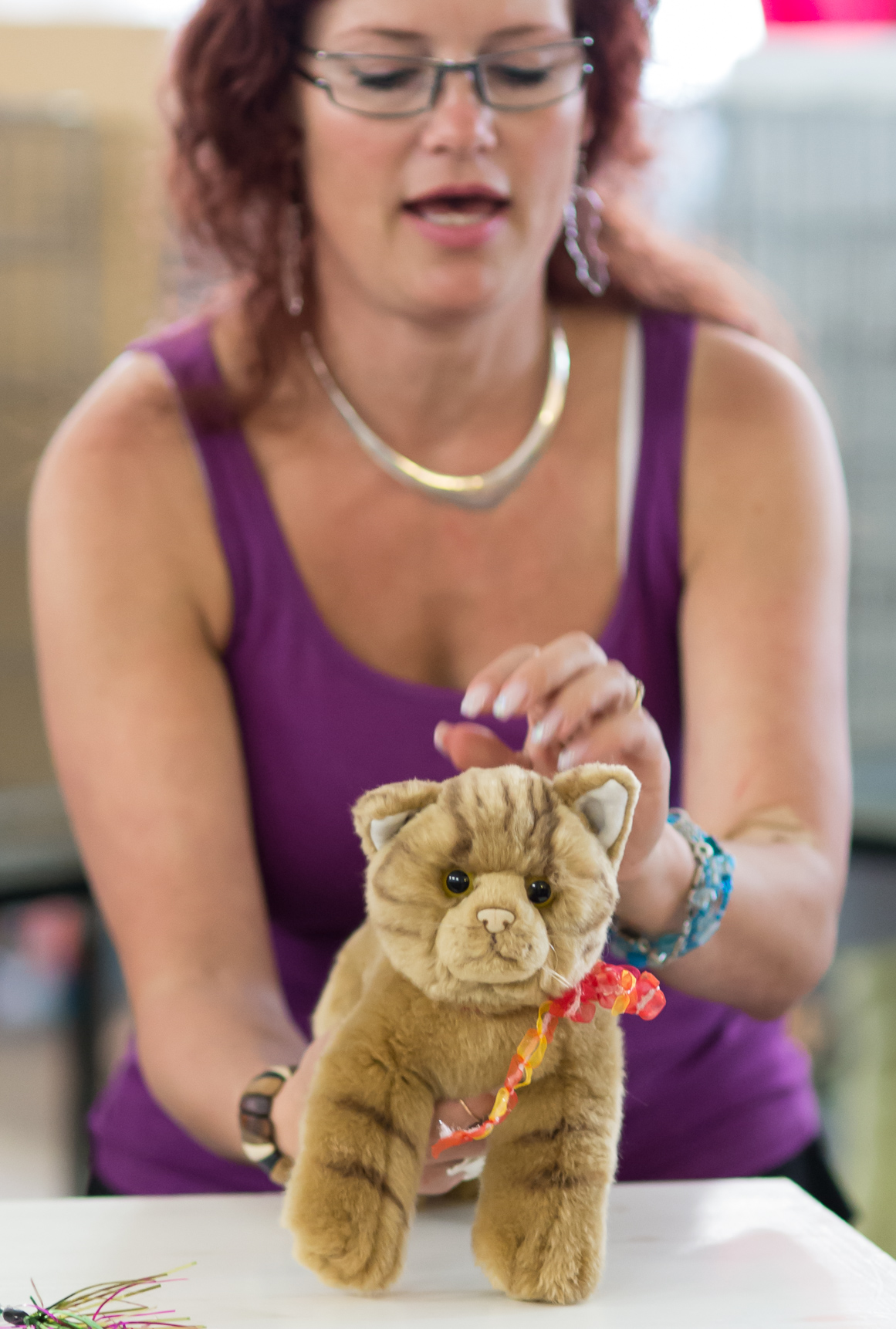 the toy cat contest, photo 223104, 2014-07-12